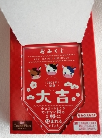 omikuji2089.jpg